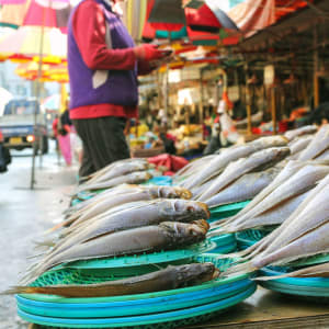 Südkorea - Grosse Mietwagenrundreise ab Seoul: Fresh fish at Jagalchi Fish market Busan