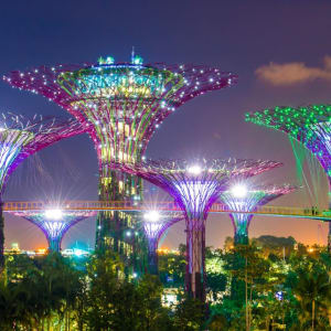 Singapore by night dans la Marina Bay à Singapour: Garden by the Bay Singapore