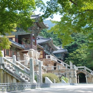 Grand circuit en voiture de location en Corée du sud de Séoul: Gyeongju Bulguksa Temple