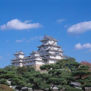 Circuit en groupe «L'éclat du Japon» de Tokyo: Himeji