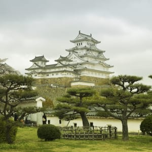 Circuit en groupe «Geisha» de Tokyo: Himeji Castle