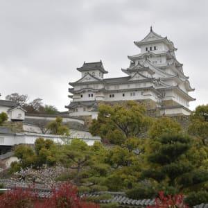 Circuit en groupe «L'éclat du Japon» de Tokyo: Himeji Castle