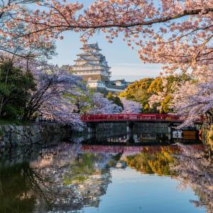 Les hauts lieux du Japon avec prolongation de Tokyo: Himeji Castle