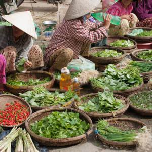 Découverte active du centre du Vietnam de Hué: Hoi An: Outdoor markets in the street