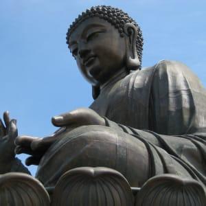 Lantau Island Tour à Hong Kong: Hong Kong - Lantau Po Lin Temple
