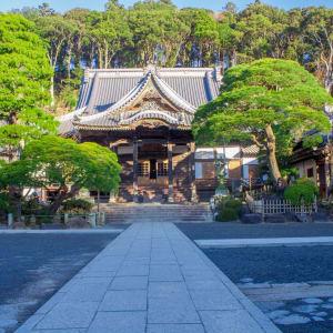 Izu Peninsula Mietwagenrundreise ab Tokio: Izu Peninsula Precincts of Shuzenji