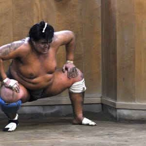 Kontrastreiches Japan ab Tokio: Japan: Sumo training session