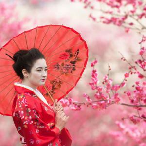 Le Japon classique de Tokyo: Japanese Woman
