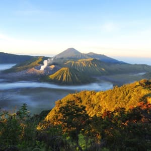 Java-Bali pour les fins connaisseurs de Yogyakarta: Java Mount Bromo