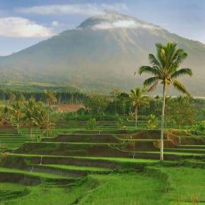 Imposanter Ijen Krater ab Südbali: Java Mount Ijen