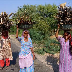 Karnatakas kulturelles Vermächtnis ab Goa: Karnataka: local women