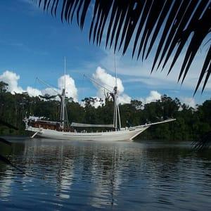 Kreuzfahrt im Inselparadies Raja Ampat ab Sorong: Katharina