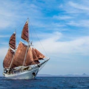 Kreuzfahrt im Inselparadies Raja Ampat ab Sorong: Katharina Middle
