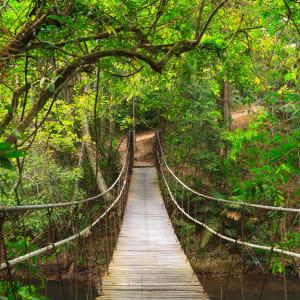 I-San – le trésor caché de la Thaïlande de Bangkok: Khao Yai  National Park: