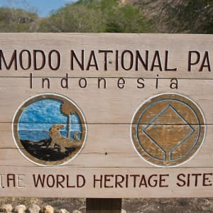 Kreuzfahrt durch die Inselwelt Indonesiens / Bali - Flores ab Südbali: Komodo National Park