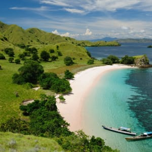 Komodo - Inseln der Warane ab Labuan Bajo: Komodo National Park beautiful beach