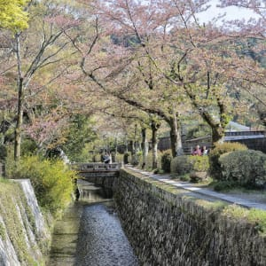 Les hauts lieux du Japon avec prolongation de Tokyo: Kyoto