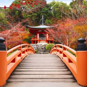 Le Japon sur de nouveaux chemins de Osaka: Kyoto Daigoji Temple