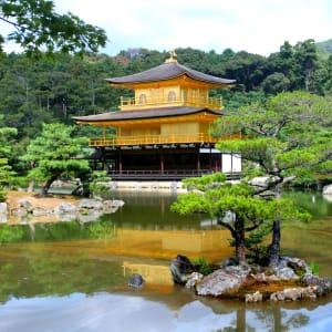 Gruppenreise «Im Reich der Sonnengöttin» ab Kyoto: Kyoto Golden Pavilion Kinkakuji