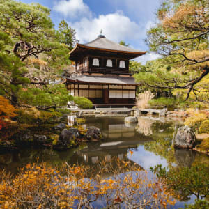 Kyoto Highlights - Ganzer Tag: Kyoto Golden Pavilion Kinkakuji