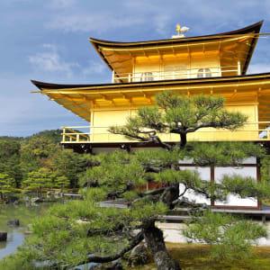 Circuit en groupe «Découverte active du Japon» de Tokyo: Kyoto Golden Pavilion Kinkakuji
