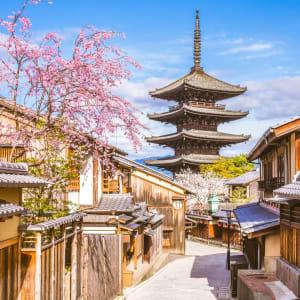 Kyoto auf eigene Faust, mit Fahrzeug - Halber Tag: Kyoto old town