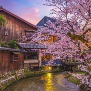 Japan auf neuen Wegen ab Osaka: Kyoto Shirakawa River