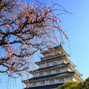 Les hauts lieux du Japon avec prolongation de Tokyo: Kyushu Shimabara Castle