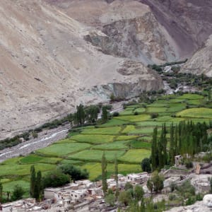 Les montagnes spectaculaires de Ladakh de Leh: Ladakh: Nubra Valley