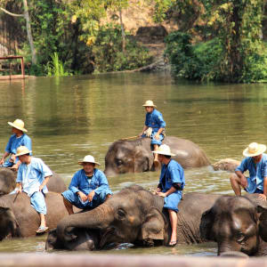 Königliches Siam ab Bangkok: Lampang