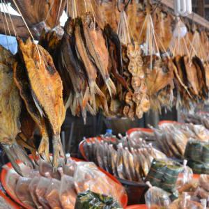 Laos Intensiv ab Vientiane: Laos Fish market