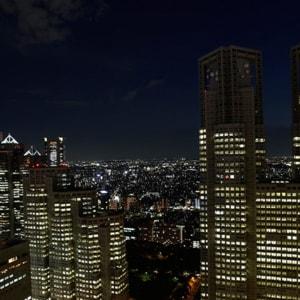 Keio Plaza à Tokyo: Night View