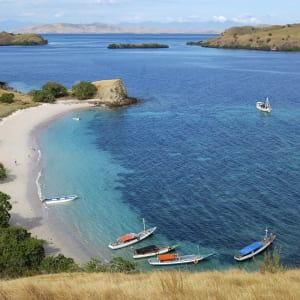 Kreuzfahrt durch die Inselwelt Indonesiens / Bali - Flores ab Südbali: Lombok National Park: pink beach