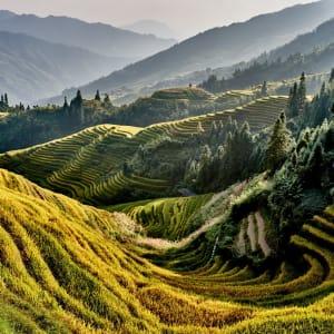 Märchenhaftes Südchina ab Shanghai: Longsheng