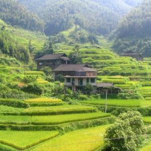 Rizières du cieletreliefs étranges de Guilin: Longsheng: rice terraces
