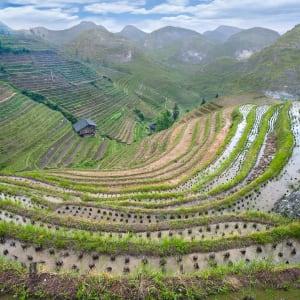 Märchenhaftes Südchina ab Shanghai: Longsheng rice terraces and karst mountains