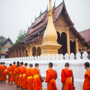 Luang Prabang aktiv erleben: Luang Prabang: Monks