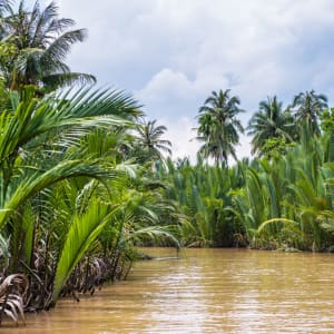 Le delta du Mékong - de/à Saigon: Mekong Delta: Beautiful nature