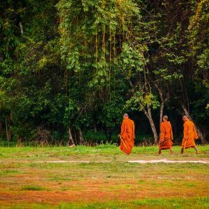 Angkor mystique de Siem Reap: Monks around Angkor Wat