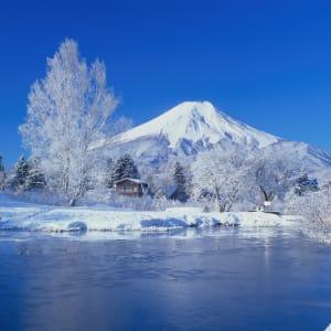 Gruppenreise «Im Reich der Sonnengöttin» ab Kyoto: Mt. Fuji: winter scenery