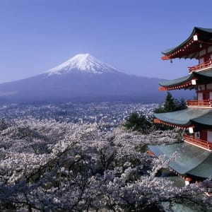 The Golden Route ab Tokio: Mt. Fuji with Chureito Pagoda