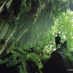 Les hauts lieux de Bornéo option longhouse de Kuching: Mulu Caves