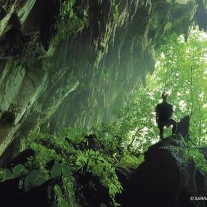 Höhepunkte Borneos ab Kuching: Mulu Caves