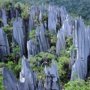 Les hauts lieux de Bornéo de Kuching: Mulu: Stone Formations