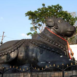 Trésors culturels du Karnataka de Bengaluru: Mysore: Nandi