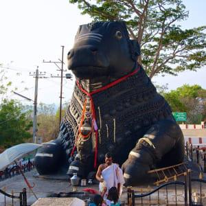 Le sud diversifié de l'Inde de Kochi: Mysore: Nandi