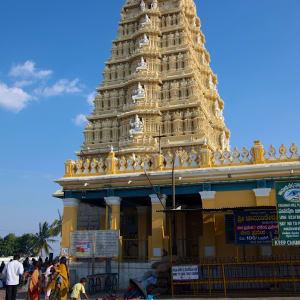 Le sud diversifié de l'Inde de Kochi: Mysore: Temple