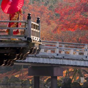 Japan auf neuen Wegen ab Osaka: Nara: a geisha stands on a wooden bridge