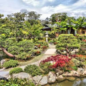 Circuit en groupe «Découverte active du Japon» de Tokyo: Nara Isuien Garden