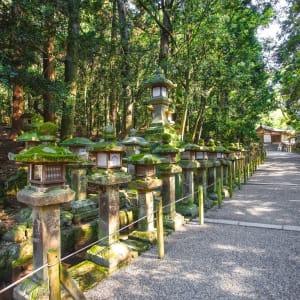 Circuit en groupe «Fuji» de Kyoto: Nara Kasuga Taisha Shrine